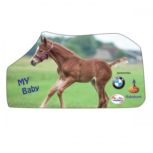 Paardendeken / ponydeken